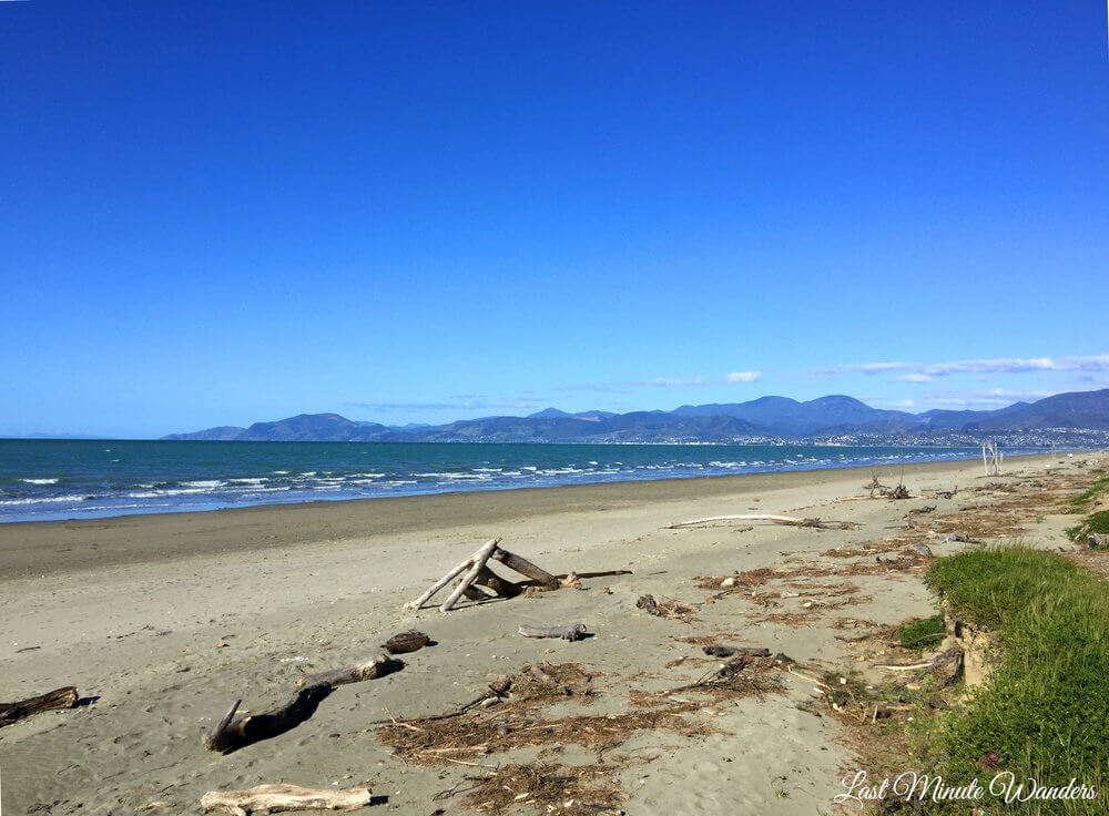 Beach with driftwood and mountains