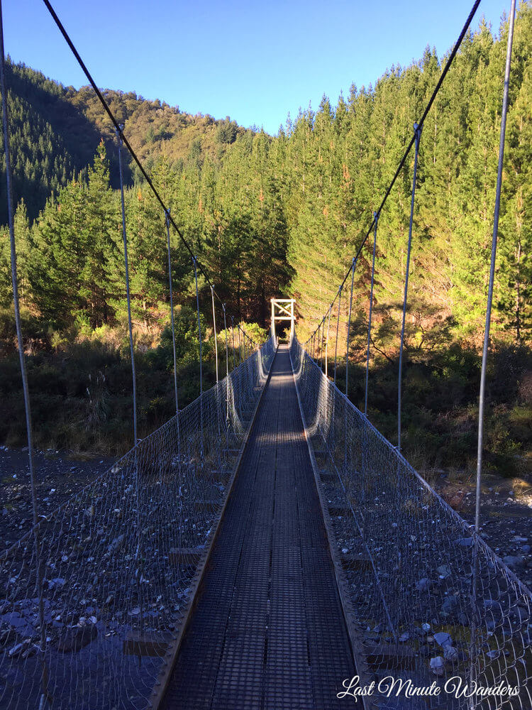 Swing bridge over river in forest