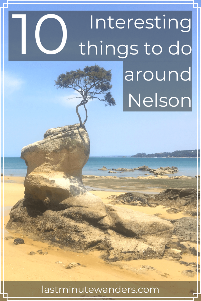 Tree growing from rock pillar on beach with text overlay - 10 interesting things to do around Nelson