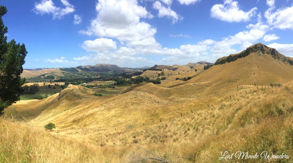 Grassy mountain landscape