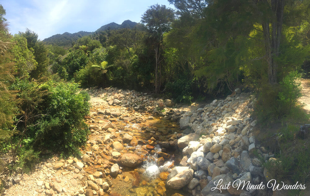Forest and rocky riverbed