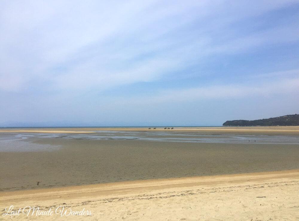 Horse trekkers on beach in distance