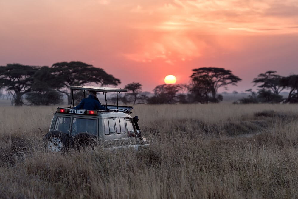 Jeep in Serengeti at sunrise