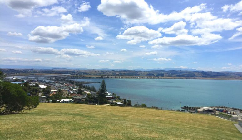 10 Free things to do in Napier, New Zealand