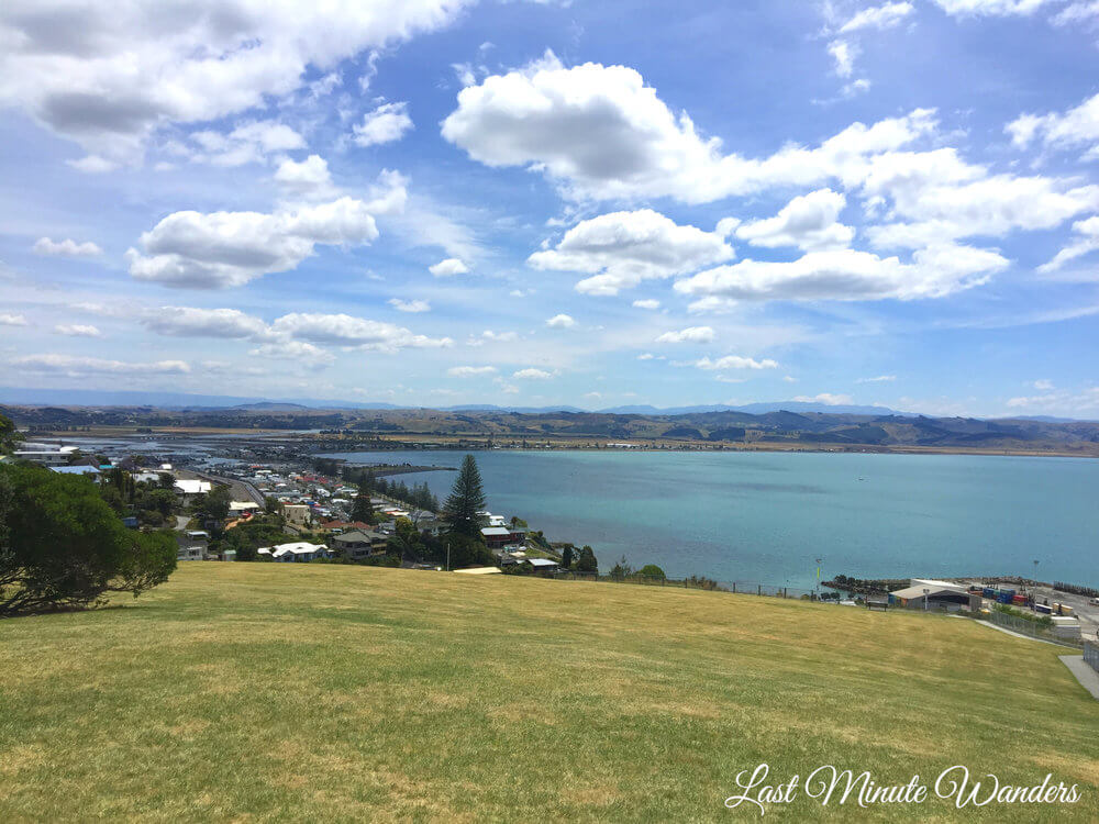 View from grassy hill of town and sea