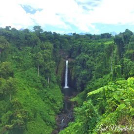 Waterfall surrounded by lots of lush greenery